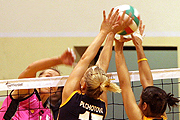 Apuestas Voleibol